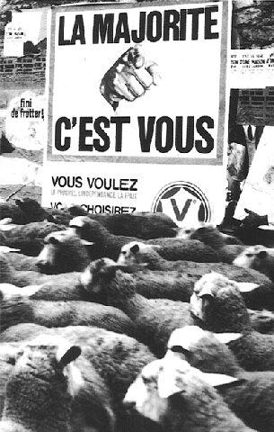 moutonsmajorite.jpg